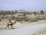 Village in Baluchistan, Iran, Middle East Photographic Print by Desmond Harney