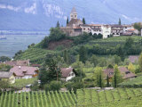 Traminer, the Town That Gave Its Name to Gewurztraminer Wine, Bolzano, Alto Adige, Italy Photographic Print by Michael Newton