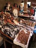 Fishermen in the Marsala Fish Market, Marsala, Sicily, Italy Photographic Print by Michael Newton