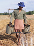 Farmer with Watering Cans, Cambodia, Indochina, Southeast Asia Photographic Print by Tim Hall