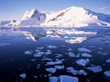 West Coast, Antarctic Peninsula, Antarctica, Polar Regions Photographic Print by Geoff Renner
