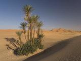 Erg Chebbi, Merzouga, Sahara Desert, Morocco, North Africa, Africa Photographic Print by Gavin Hellier