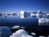 Ice Scenery and Seal, Antarctica, Polar Regions Photographic Print by Geoff Renner