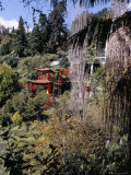View to Japanese Garden, Monte Palace Tropical Garden, Funchal, Madeira, Portugal Photographic Print by Jenny Pate