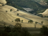 Landscape Near Larino, Molise, Italy Photographic Print by Michael Newton