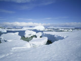 Coastal Landscape, Antarctic Peninsula, Antarctica, Polar Regions Photographic Print by Geoff Renner