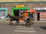Typical Street Scene, Gonder, Gonder Region, Ethiopia, Africa Photographic Print by Gavin Hellier