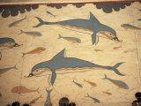 Dolphin Fresco, Knossos, Crete, Greece Fotografisk tryk af James Green