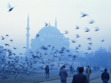 Latali Mosque, Istanbul, Turkey, Eurasia Fotografie-Druck von James Green