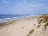 Dunes, Fort Mahon, Calais, Pas-De-Calais, Nord-Picardie (Picardy), France Photographic Print by David Hughes