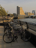 Bicycle Racks, Canary Riverside Walk Alongside River Thames, Canary Wharf, London Photographic Print by David Hughes