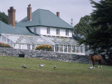 Exterior of Government House, Stanley, Falkland Islands, South America Photographic Print by G Richardson