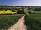 Footpath, Heaversham, Near Sevenoaks, North Downs, Kent, England, United Kingdom Photographic Print by David Hughes