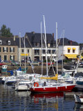 Harbour, Paimpol, Cotes d'Armor, Brittany, France Photographic Print by David Hughes