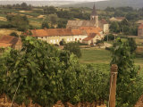 Maconnais Vineyards, Poilly Fuisse, Ozenay, Near Macon, Saone-Et-Loire, Burgundy, France Photographic Print by David Hughes