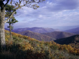 Area Near Loft Mountain, Shenandoah National Park, Virginia, USA Photographic Print by James Green