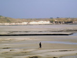 Walker on Sands at Low Tide, Portbail, Cotentin Peninsula, Manche, Normandy, France Photographic Print by David Hughes