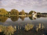 River Thames, Goring, Oxfordshire Berkshire Borders, England, United Kingdom Photographic Print by David Hughes