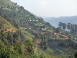 Terraced Fields on the Road to Kisoro, Southwestern Area, Uganda, East Africa, Africa Fotografisk tryk af David Poole