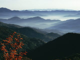 Mist Rising from the Cataloochee Ski Area, Near Maggie Valley, North Carolina, USA Photographic Print by Julian Pottage