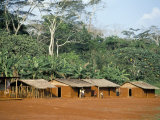 Village in the Jungle, Northern Area, Congo, Africa Photographic Print by David Poole