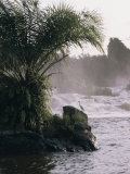 Chutes De La Lobe, Kribi, West Coast, Cameroon, Africa Photographic Print by David Poole