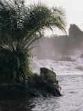 Chutes De La Lobe, Kribi, West Coast, Cameroon, Africa, Photographic Print