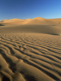 Sand Dunes and Dune Sea, Sesriem, Namib Naukluft Park, Namibia, Africa Photographic Print by Lee Frost