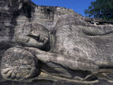 Reclining Buddha, Gal Vihara, Polonnaruwa, Unesco World Heritage Site, Sri Lanka Photographic Print by David Poole