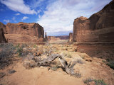 Park Avenue, Arches National Park, Moab, Utah, USA Photographic Print by Lee Frost
