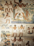 Paintings of Scenes of Everday Life in the Tomb of Nakht Photographic Print by Jack Jackson