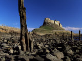Lindisfarne Castle, Holy Island, Northumberland, England, United Kingdom Photographic Print by Lee Frost