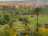 View Over Cultivated Fields and Palms to Oasis Town of Tinerhir, Dades Valley, Morocco, North Africa, Photographic Print
