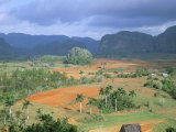 View Over Vinales Valley Towards Tobacco Plantations and Mogotes, Vinales, Cuba Photographic Print by Lee Frost