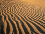Ripples in the Sand, Sesriem, Namib Naukluft Park, Namibia, Africa Photographic Print by Lee Frost