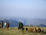 Shepherds at Geech Camp, Simien Mountains National Park, Unesco World Heritage Site, Ethiopia Photographic Print by David Poole