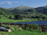 Watendlath Tarn, Borrowdale, Near Keswick, Lake District, Cumbria, England, United Kingdom Photographic Print by Lee Frost
