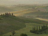 Morning View Across Val d'Orcia to the Belvedere, Near San Quirico d'Orcia, Tuscany, Italy Photographic Print by Lee Frost