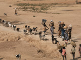 Women on Their Way to Washplace in the River Niger, Mali, Africa Fotografisk tryk af Jack Jackson