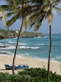 Sam Lords Castle, Palms and Beach, Barbados, West Indies, Caribbean, Central America Photographie par J Lightfoot