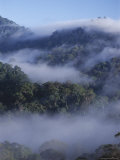 Dawn Mists in Virgin Dipterocarp Rainforest, Tallest in the World, Danum Valley, Island of Borneo Photographic Print by Lousie Murray