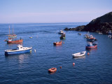 Fishing Boats, Sark, Channel Islands, United Kingdom Photographic Print by J Lightfoot