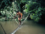 Yanomami Man Carrying Peach Palm Fruit Crossing a River, Brazil, South America Photographic Print by Robin Hanbury-tenison