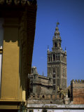 Giralda Tower, Seville, Andalucia, Spain Photographic Print by J Lightfoot