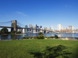 Brooklyn Bridge and Manhattan Skyline, Brooklyn Bridge Park, New York City, USA Photographic Print by Amanda Hall