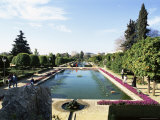 Formal Water Garden in the Alcazar, Cordoba, Andalucia, Spain Photographic Print by Michael Newton