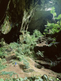 Looking out Through Entrance of Cave, Deer Cave, Gunung Mulu National Park, Sarawak Photographic Print by Lousie Murray