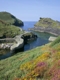 Boscastle Harbour, Boscastle, Cornwall, England, United Kingdom Photographic Print by Roy Rainford