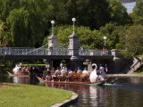 Lagoon Bridge and Swan Boat in the Public Garden, Boston, Massachusetts, United States of America Photographic Print by Amanda Hall
