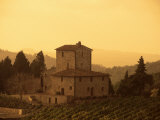 Farms and Vines, Tuscany, Italy Photographic Print by J Lightfoot